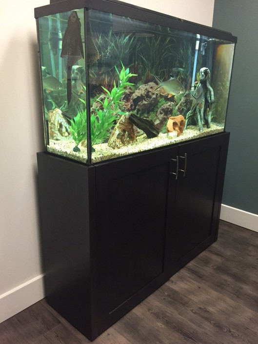 Custom Hardwood Fish Tank Casing